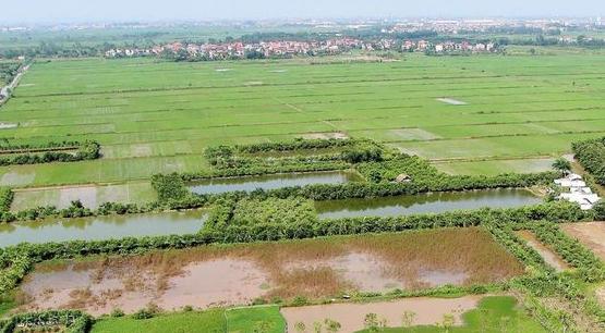 Đất thổ cư là gì? Kinh nghiệm mua bán nhà đất thổ cư an toàn